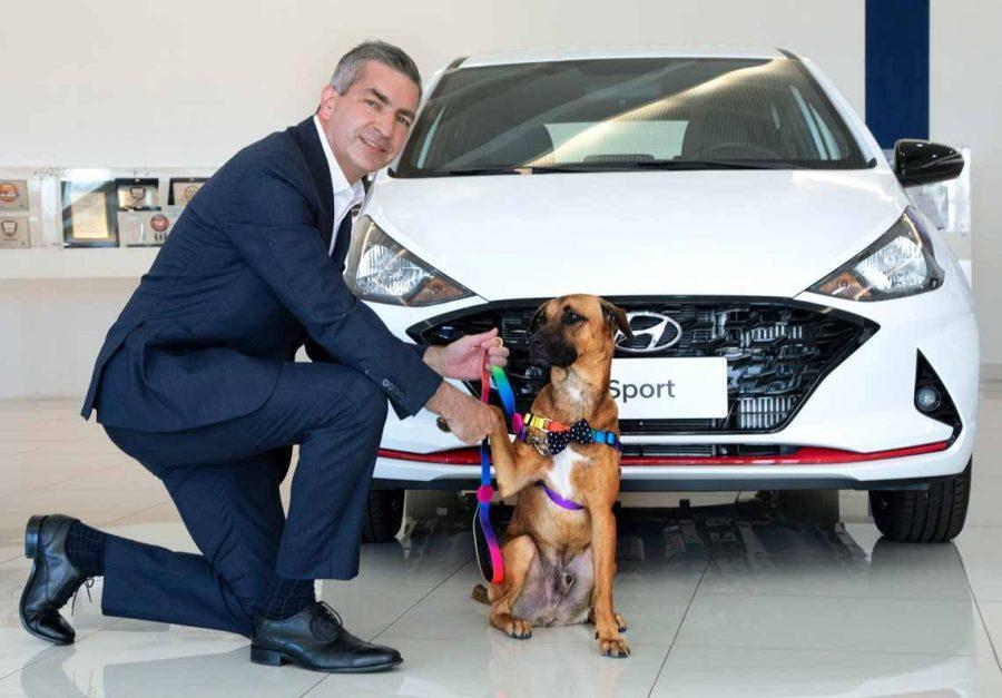 """""""Cão-sultor"""" de vendas da Hyundai"""